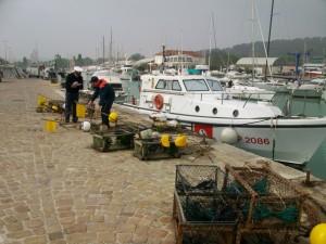 La Guardia costiera di Pesaro sequestra materiale da pesca