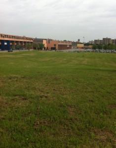 Sfalcio erba svolto al Campus di Pesaro