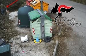 La droga sequestrata a Marotta nel bidone della spazzatura