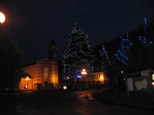 Borgo Pace: l'albero naturale più alto