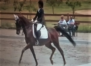 Silvia Baldelli (Equus Asd)