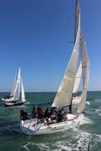 regata (1)
