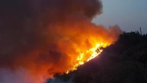 L'incendio sul San Bartolo (foto tratta da Fb)
