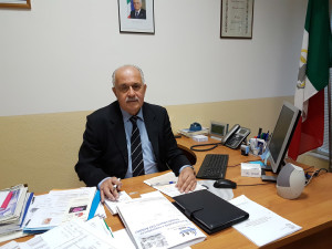 Fausto Luzi - Anmil