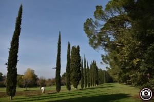 Un'immagine del parco Miralfiore di Pesaro (foto Filippo Baioni)