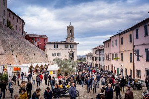cartoceto festival