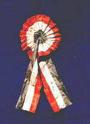 Coccarda tricolore originale ideata da De Rolandis e Zamboni, conservata al museo dell'Università di Bologna
