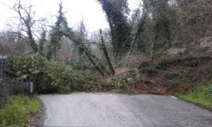 Frane e caduta alberi sulle strade provinciali