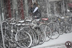 Pesaro sotto la neve 00011
