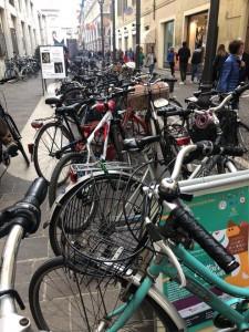 Bicicletta Pesaro gente ciclabile
