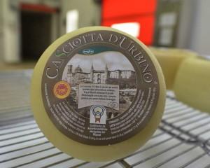 Casciotta d'Urbino Dop