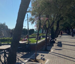 Yoga in viale Trieste