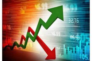 grafico investimenti